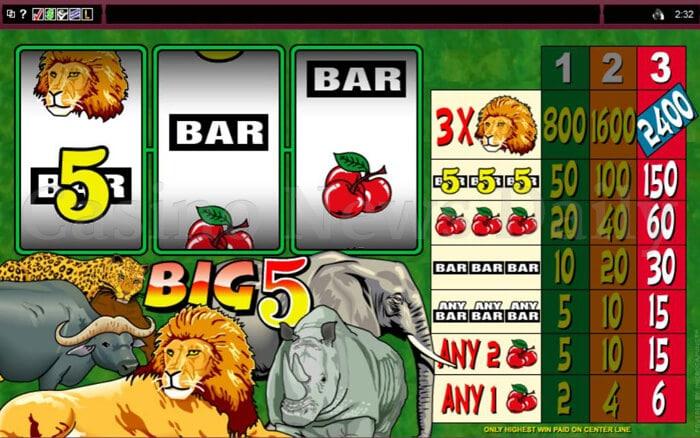 Big 5 Slot microgaming