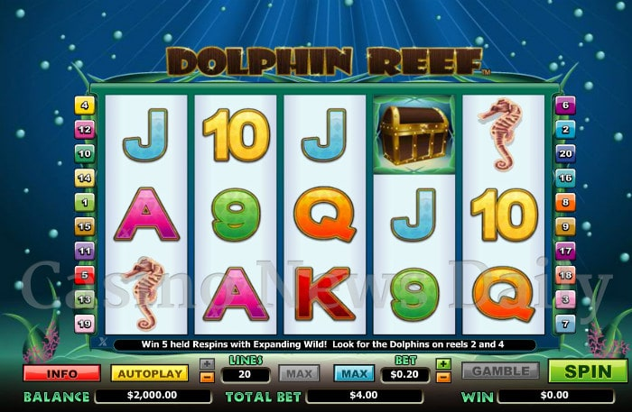 Dolphin Reef 20-Line Online Slot