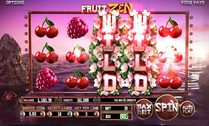 Fruit Zen Slot betsoft