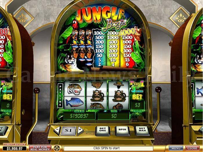 Jungle Boogie Slot playtech