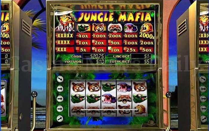Jungle Mafia Slot playtech