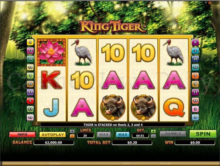 King Tiger Slot microgaming
