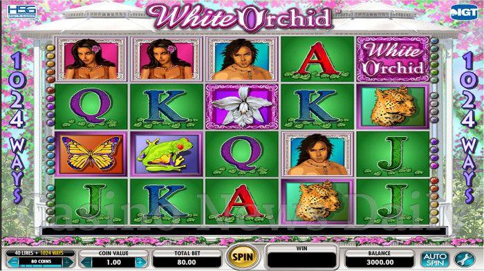 Обзор казино слотоландия