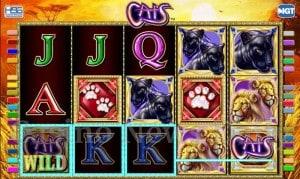 Cats Online Slot
