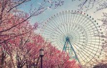 Overregulation Will Harm Japan's Casino Industry, Analysts Warn