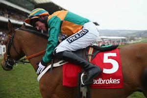 Ladbrokes horse racing betting rules for limit patrick gerber bettingen