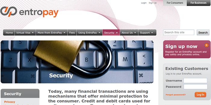 Screenshot of EntroPay Security Page
